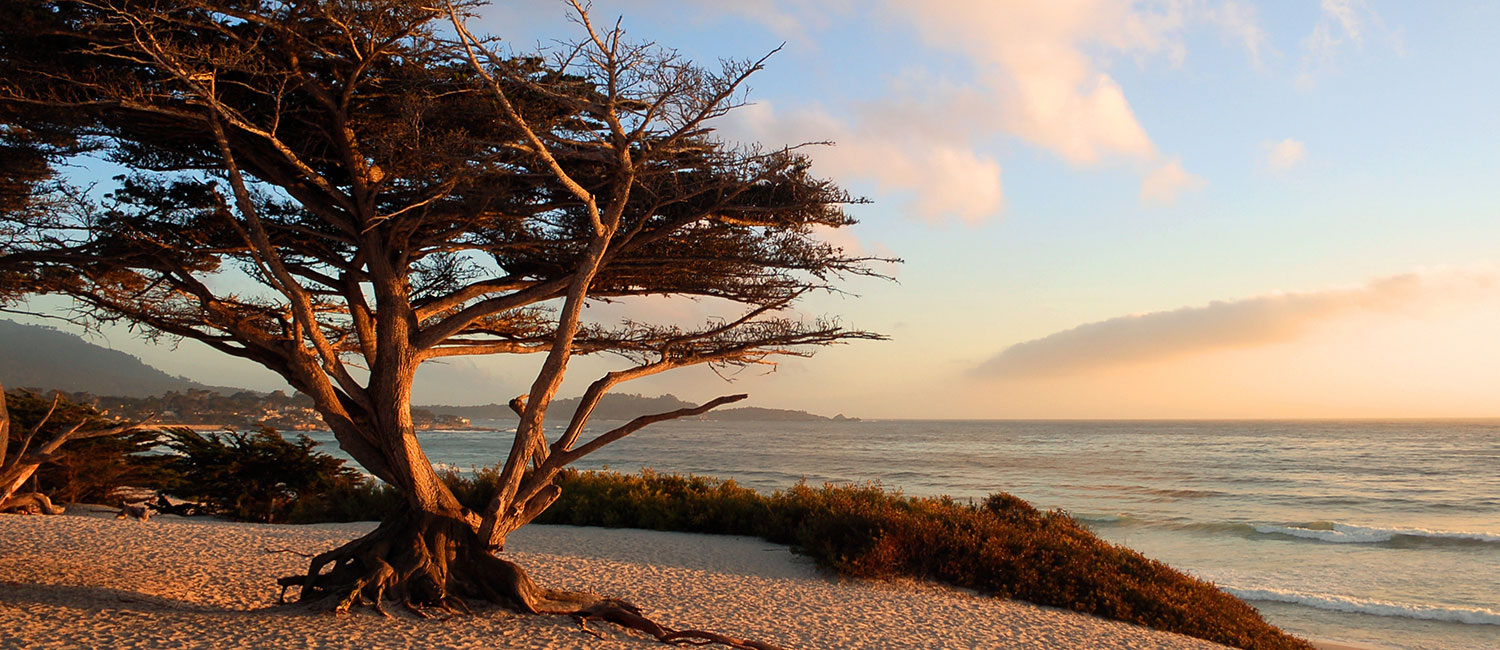 IDEALLY SEATED NEAR MONTEREY CA. TOP ATTRACTIONS